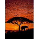 4-501 - African Sunset
